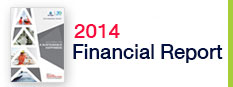 2014 Financial report